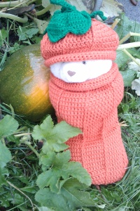 pumpkin hats 007