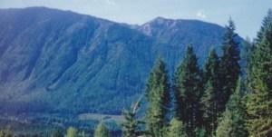 true blue mountain