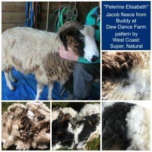 Pelerine Elisabeth Buddy fleece